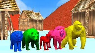 Learn Gorilla Animals Finger Family song for kids,nursery rhymes,tiger,Bear,cheetha,arcusnmedia Kidz
