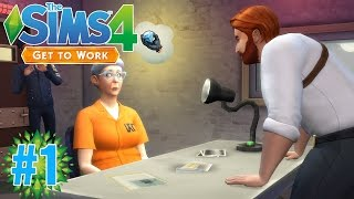Living with Simmers!