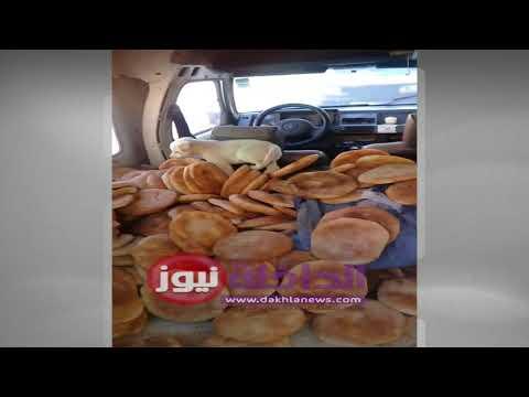 فيديو صادم : كلب كيتسارا فوق الخبز قبل ما يفرقوه على الحوانت