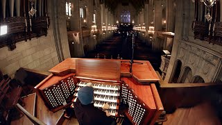 Pipe Organ (An Instrument The Size Of A Building)