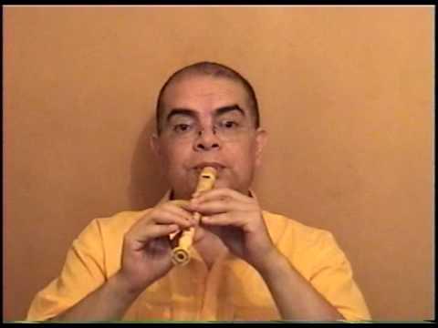 OSUNA BANDA SHOW Flauta Dulce