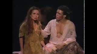 Нотр-Дам де Пари (мюзикл)