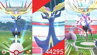 《Pokemon GO》哲爾尼亞斯 第六代妖精系傳說寶可夢!ゼルネアス Xerneas!
