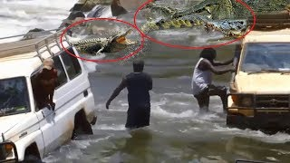 Lạnh Sống Lưng | Con Đường Đầy Rẫy Cá Sấu - The most dangerous road 😁CTN😁