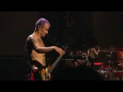 Red Hot Chili Peppers - Dance, Dance, Dance - Live Cologne alemanha Germany 2011