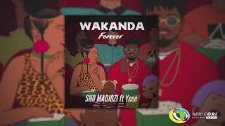 Sho Madjozi - Wakanda Forever [Feat. Ycee] (Official Audio)