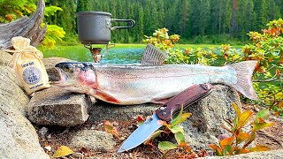 SOLO Backpacking & REMOTE Trout Fishing! (Catch & Cook)