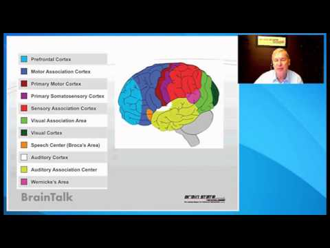 BrainTalk - Cancer and the Brain, How Brainwave Optimization helped me to Survive - October 2013