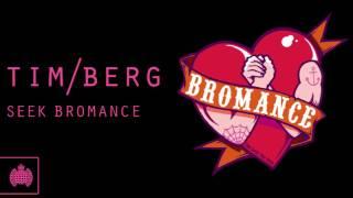 Seek Bromance - Avicii's Vocal Extended