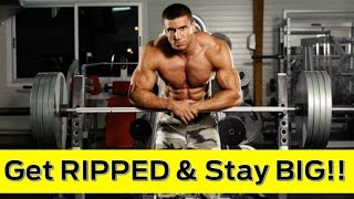 build muscle and burn fat workout program  mi40x system