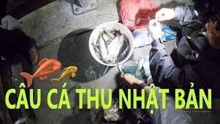 #1. Câu cá đêm tại mũi Blow Hole - Trực tiếp từ Nam Thái Bình Dương. Nước Úc sắp hết cá rồi?