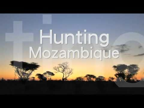 Mozambique hunting teaser