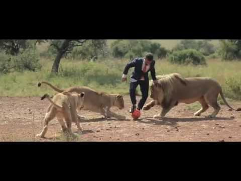 A world's first: Kevin Richardson playing football with wild lions (FULL VIDEO)