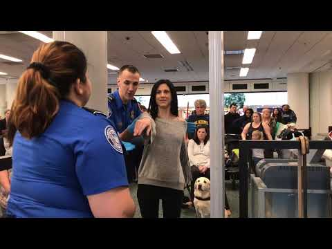 Airport security check; with guide dog Antonia!