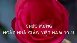 Chúc mừng ngày Nhà Giáo Việt Nam 20 - 11