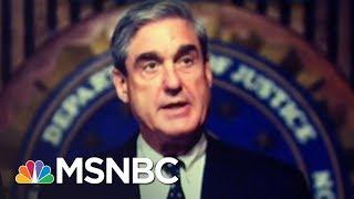 President Trump Skips Russian Sanctions Law, Meekly Echoes Mueller Instead | Rachel Maddow | MSNBC