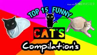 Top 15 Funny Cat's  Compilations