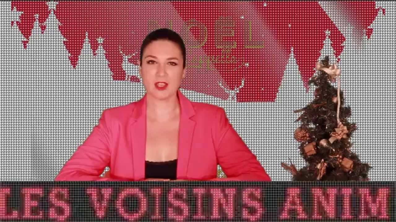 video DÉCEMBRE