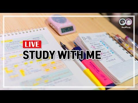 2018.12.19. 오늘도 힘낼고양, 같이 공부해요 / Study with me / Live / ASMR