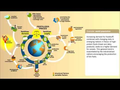 Understanding Fertilizer Market Dynamics