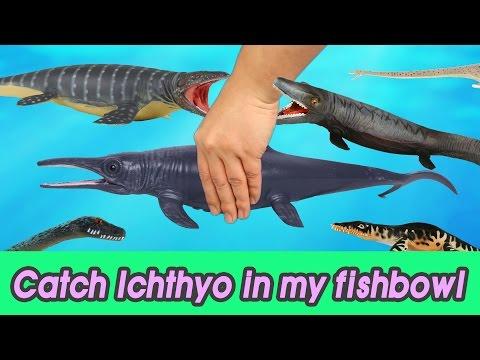 [EN] #47 Let's catch Ichthyosaurus in my fishbowl 2 kids education, Collecta figure [CoCosToy]