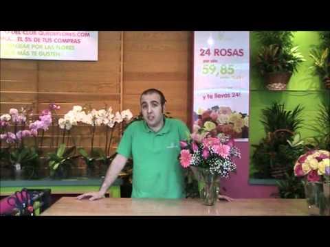 Especial día de la Madre 2012 Quedeflores.com