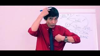 Bài 1 Khóa Học TRÍ TUỆ CẢM XÚC - QUYẾT ĐỊNH THÀNH CÔNG | TS Lê Thẩm Dương