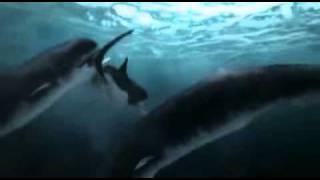深海のハンター4