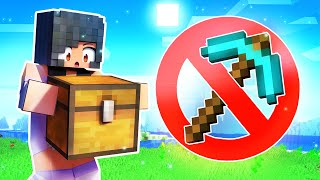 Tools BANNED From MINECRAFT!