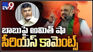 Chandrababu trusts Pakistan PM, not India's: Amit Shah..