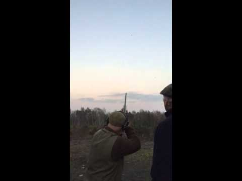 Serious Flush Shooting at Bisley