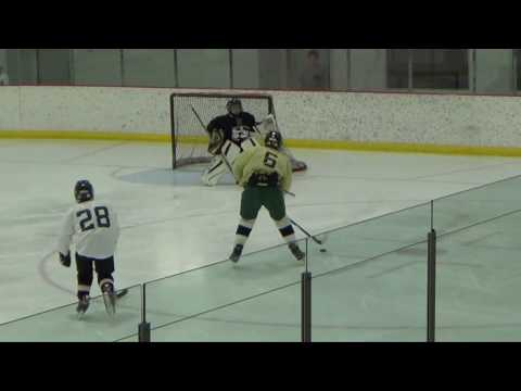 Week 8 Malkin Highlights: 2016 Quest Hockey 4 on 4 Summer League