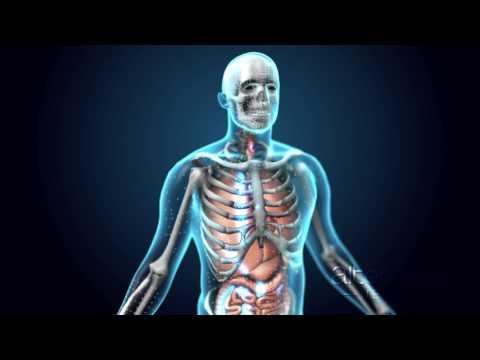 Video: Alternate Health CBD/THC Delivery Systems