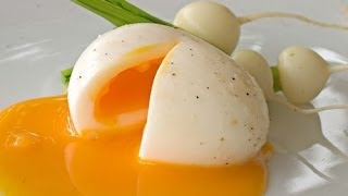Perfect Half Boiled Egg Tutorial