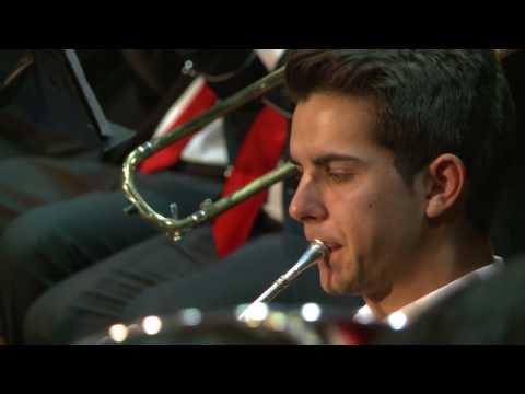 Tomás 'el Músico' ASOCIACIÓN BANDA DE MÚSICA 'FLOR DE LA MANCHA'  PUEBLA DE ALMORADIEL