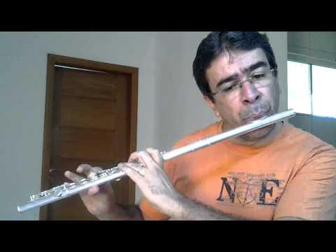 Dust in the wind - Kansas - Estudando Flauta Transversal
