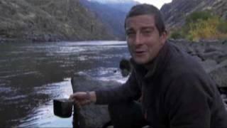 Born Surivor - Fish Head Soup