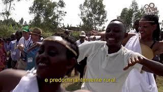 DOCUMENTÁRIO - Como a vaca Jersey está transformando a África!