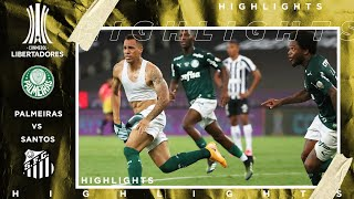 Palmeiras vs Santos | LIBERTADORES FINAL HIGHLIGHTS | 1/30/2021 | beIN SPORTS USA