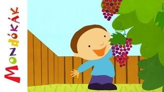 Elmentem én a szőlőbe