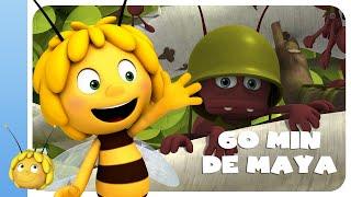 Maya l'Abeille  - 1 heure non-stop d'épisodes de Maya !