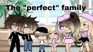 "THE ""PERFECT"" FAMILY ~