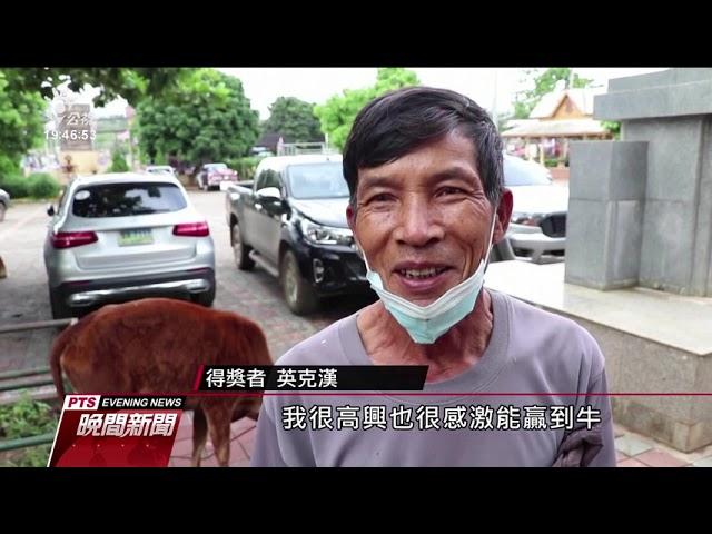 為鼓勵接種 印尼農村打一針送一雞、泰國週週抽活牛