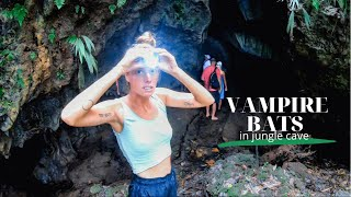 VAMPIRE BATS in the depth of the PANAMA jungle | Ep 75 | Sailing Merewether