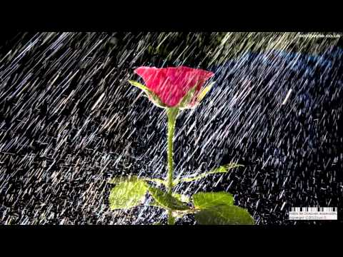 Baixar Guns N' Roses - November Rain [Subtitulada En Español] [HD]