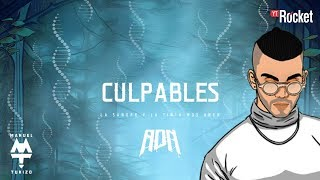 Culpables - MTZ Manuel Turizo | Video Letra