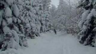 Sortie de ski de fond en famille