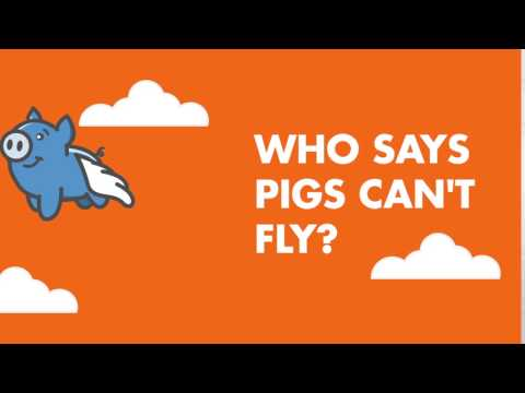 InterestPiggy.com - Who Says Pigs Can't Fly?
