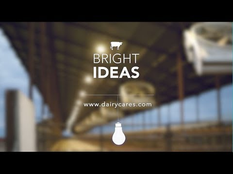 Dairy Farmers' Bright Ideas Are Helping The Planet