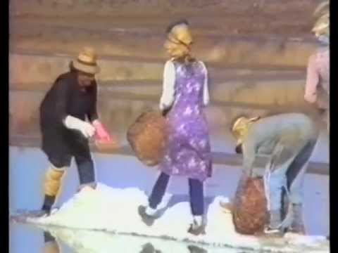 Salt harvesting in Portugal